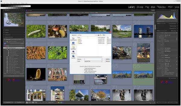 Synchronize Lightroom catalog via katalog export