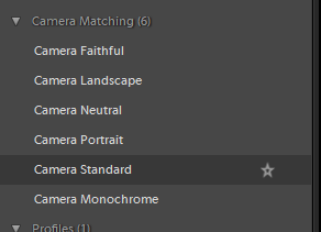 Lightroom Profile and Presets