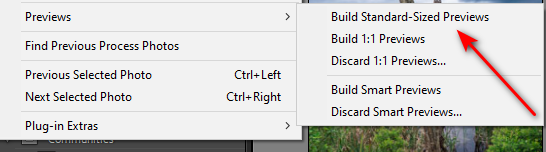 Lightroom processing without import?